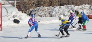 фото мини хоккей (2)